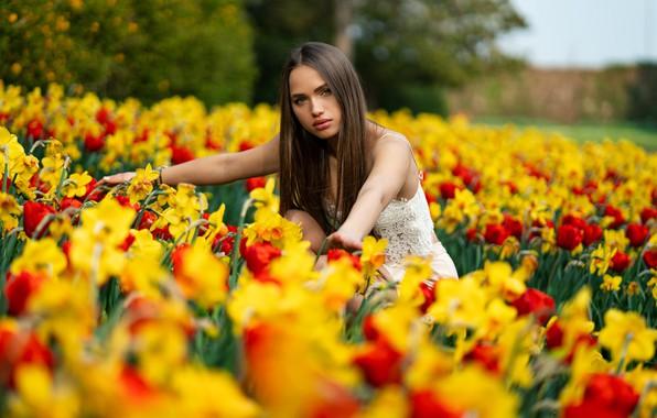 Картинка взгляд, деревья, цветы, модель, юбка, портрет, макияж, прическа, шатенка, топик, красотка, в белом, на природе, …