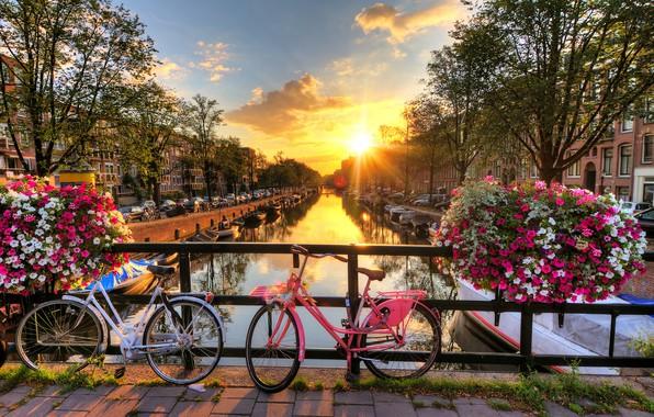 Картинка лучи, закат, цветы, машины, мост, город, дома, лодки, вечер, Амстердам, канал, Нидерланды, велосипеды, Голландия