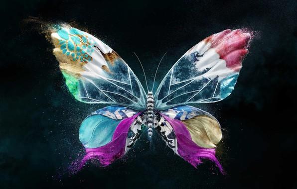 Картинка яркие краски, полет, бабочка, крылья, насекомое, flight, wings, butterfly, 3D графика, insect, bright colors, 3D …