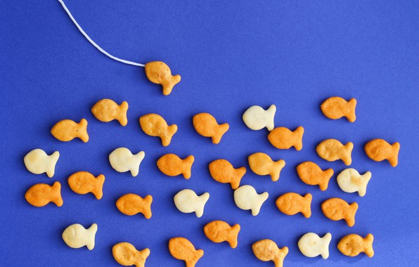 Картинка рыбки, фон, рыбалка, печенье, крекеры