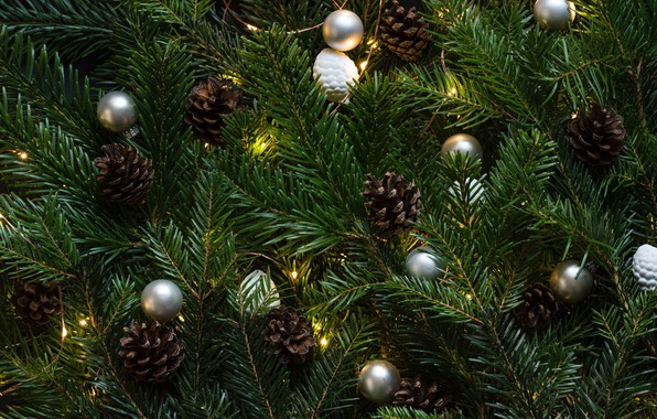 Картинка green, christmas tree, christmas lights