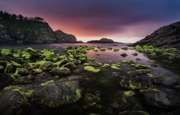 Картинка море, облака, водоросли, закат, горы, камни, скалы, берег, вечер, зеленые, залив, Испания