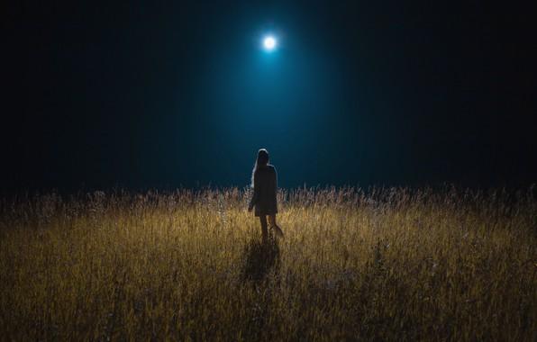 Картинка wallpaper, girl, moon, field, girls, nature, night, mood, moonlight, meadow