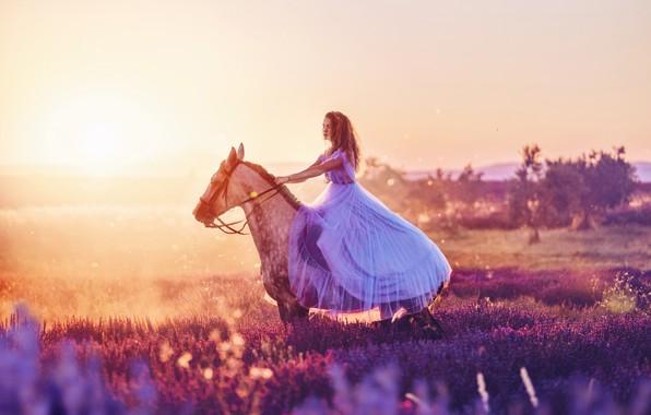 Картинка девушка, конь, лошадь, платье, вереск, Кристина Макеева