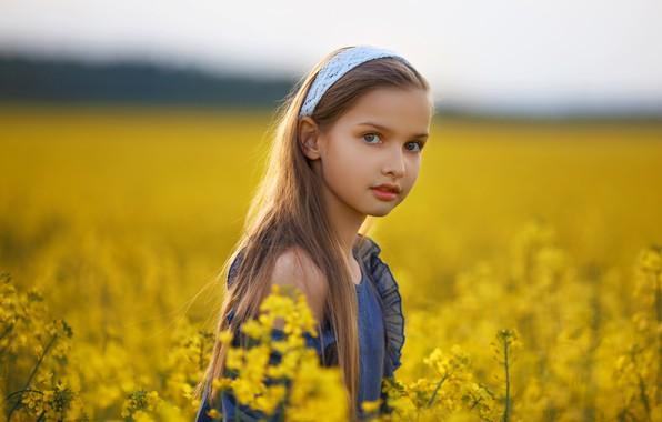 Картинка поле, лето, взгляд, природа, платье, девочка, травы, ребёнок, Алексей Баталов