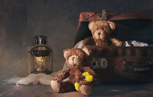Картинка цветы, фонарь, чемодан, плюшевые мишки