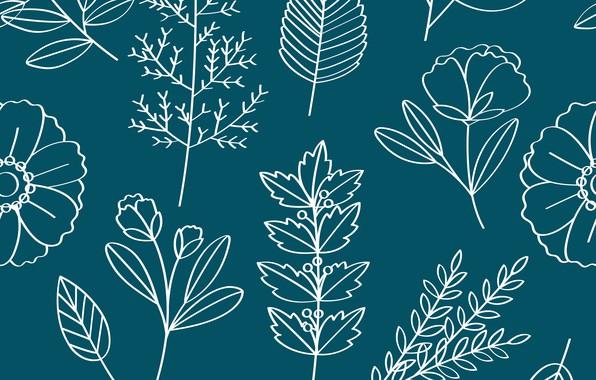 Картинка листья, цветы, фон, текстура, Vector, Pattern, Floral