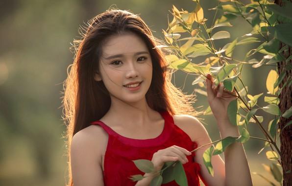 Картинка листья, девушка, ветки, природа, улыбка, дерево, брюнетка, азиатка, плптье