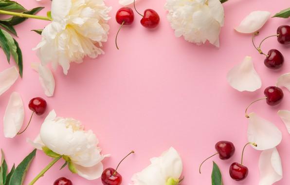 Картинка цветы, вишня, ягоды, пионы