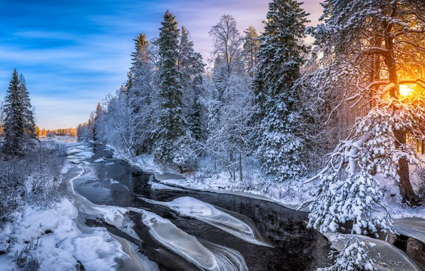 Картинка зима, лес, река, утро