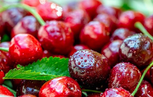 Картинка капли, макро, вишня, ягоды, листок, размытие, красные, фрукты, влажные, много, черешня, боке, спелые