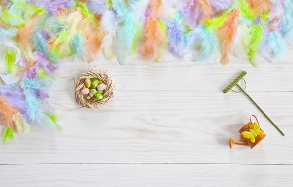 Картинка яйца, перья, colorful, Пасха, happy, flowers, eggs, easter, decoration