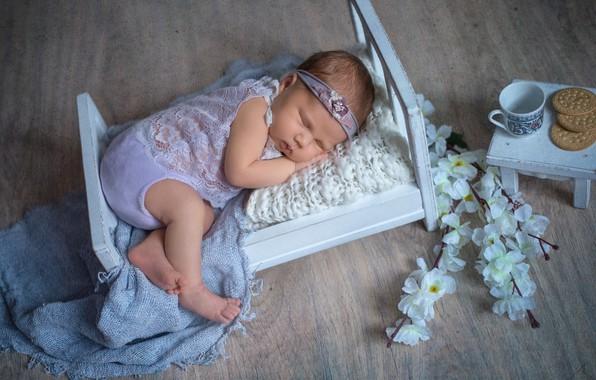 Картинка цветы, ветки, сон, печенье, чашка, столик, ребёнок, младенец, кроватка, Наталья Михайлова