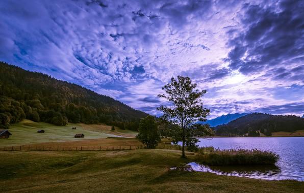 Картинка поле, осень, лес, небо, трава, горы, природа, озеро, синева, дерево, холмы, склоны, забор, вид, поля, …