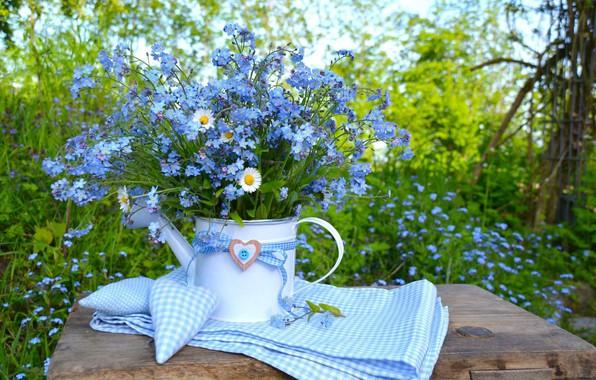 Картинка природа, стол, голубой, сердце, ромашки, букет, nature, heart, blue, flowers, незабудки, chamomile, forget-me-nots