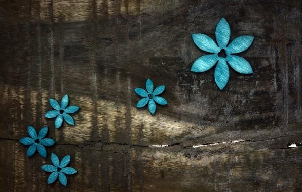 Картинка цветы, фон, доски