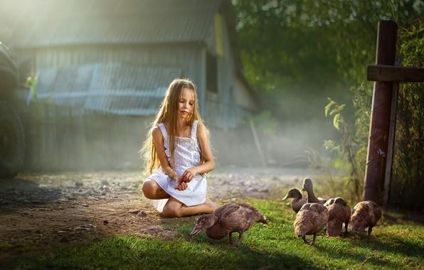 Картинка лето, природа, дом, утки, девочка, ребёнок, Dmitry Usanin, Дмитрий Усанин