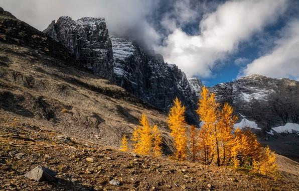Картинка осень, небо, горы