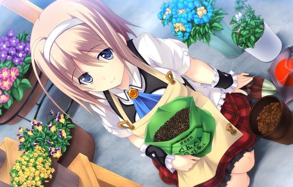Картинка розовые волосы, смотрит вверх, visual novel, совок, сидит на коленях, цветы в горшках, by Masato …