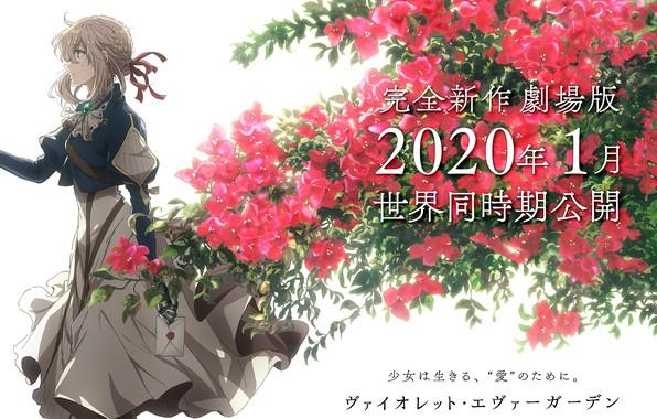 Картинка письмо, иероглифы, art, в профиль, красные цветы, садовые цветы, Violet Evergarden, violet evergarden, Akiko Takase