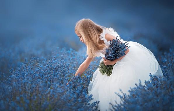 Картинка цветы, настроение, букет, платье, девочка, лаванда, боке