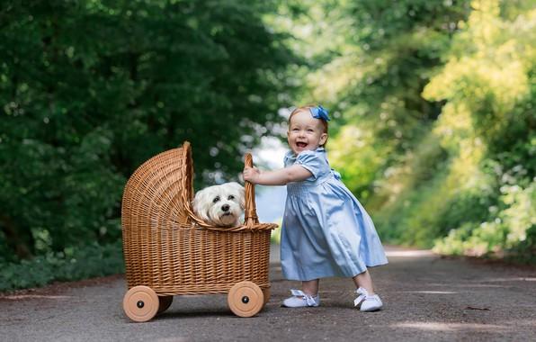 Картинка дорога, радость, настроение, собака, платье, девочка, коляска, прогулка, мордашка, малышка, пёсик
