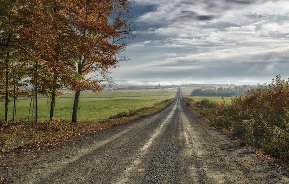 Картинка дорога, поле, осень, небо, природа