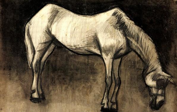 Картинка Vincent van Gogh, белая лошадь, Old Nag