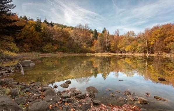 Картинка осень, лес, деревья, пейзаж, природа, озеро, отражение, камни, Болгария, Александър Сандев