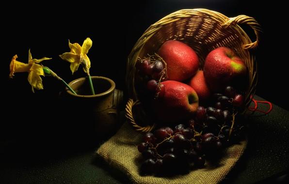 Картинка капли, цветы, темнота, стол, яблоки, виноград, красные, горшок, фрукты, полумрак, черный фон, натюрморт, корзинка, мешковина, …