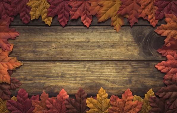 Картинка осень, листья, фон, дерево, wood, background, autumn, leaves, осенние, maple