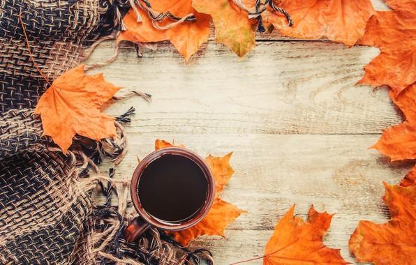 Картинка осень, листья, плед, wood, autumn, leaves, coffee cup, чашка кофе