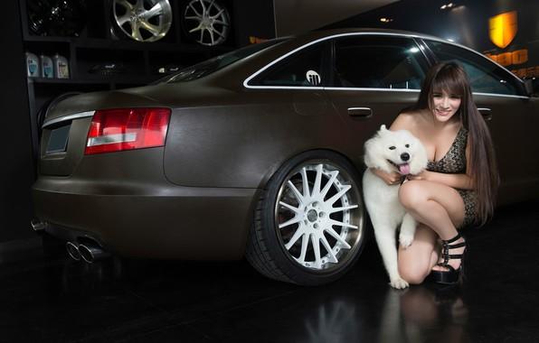 Картинка авто, взгляд, улыбка, Audi, собака, Девушки, азиатка, красивая девушка, позирует над машиной