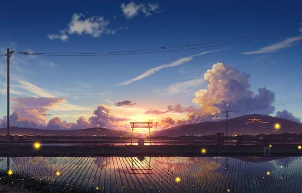 Картинка дорога, облака, закат, светлячки, холмы, столбы, провода, тишина, Япония, птички, отражение в воде, рисовые поля, …