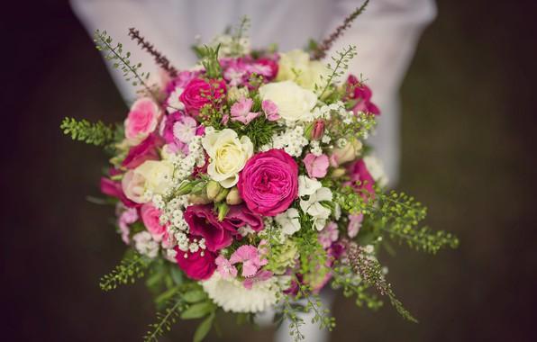 Картинка цветы, розы, букет, гвоздики