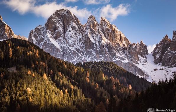 Картинка лес, небо, солнце, облака, снег, деревья, горы, природа, скалы, Альпы, Италия, Massimo Mazza