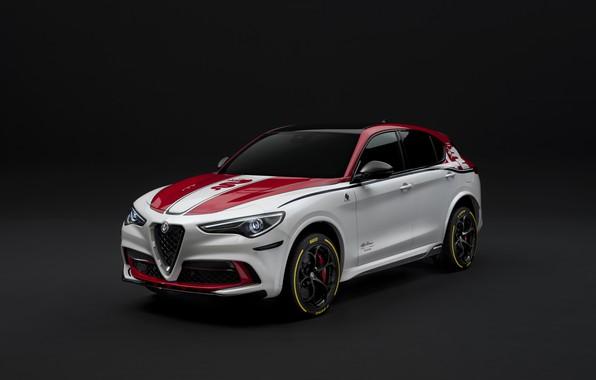 Картинка тюнинг, Alfa Romeo, Racing, 2019-20, Stelvio Quadrifoglio