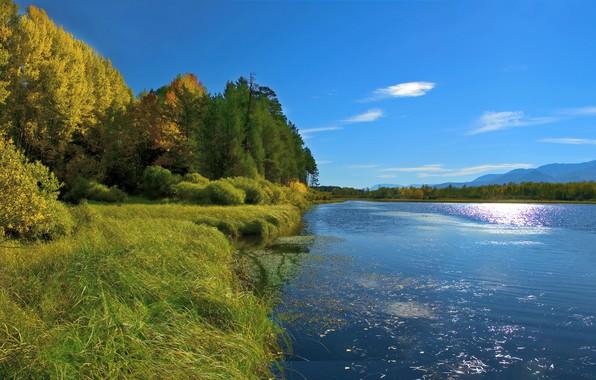 Картинка осень, лес, небо, трава, солнце, деревья, горы, река, берег, Россия, Сибирь