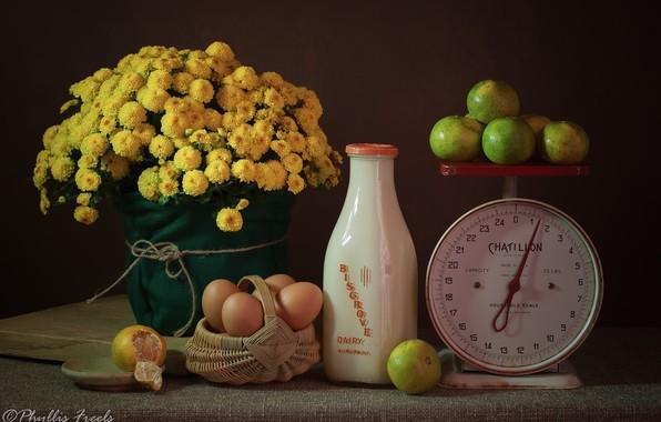 Картинка цветы, яйца, молоко, натюрморт, корзинка, весы, хризантемы, жёлтые, бутылка молока, мадарины