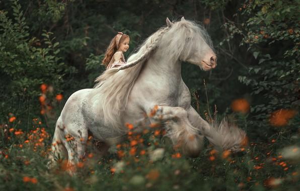 Картинка лес, цветы, конь, всадница, грива, девочка, наездница