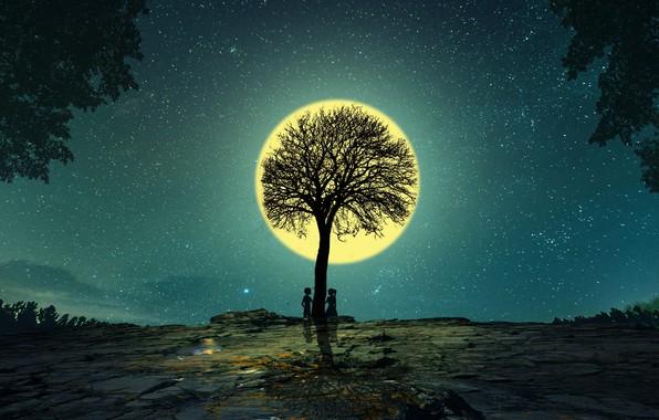 Картинка ночь, дерево, луна, романтика, графика, звёзды, пара, digital art