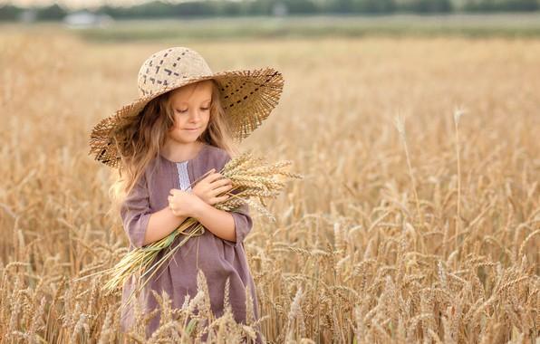 Картинка поле, природа, шляпа, платье, девочка, колосья, ребёнок, Виктория Дубровская