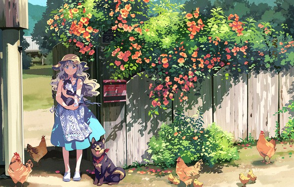 Картинка кот, цветы, деревня, девочка, куры