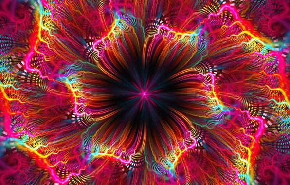 Картинка цветок, яркие краски, фрактал, flower, компьютерная графика, fractal, bright colors, computer graphics