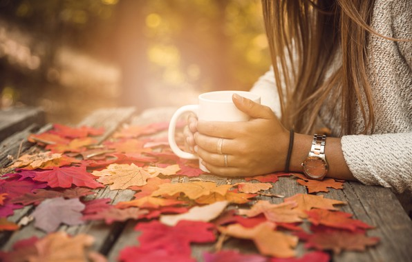 Обои осень, листья, девушка, парк, colorful, чашка, girl, клен, wood, park, background, autumn, leaves, cup, coffee, …