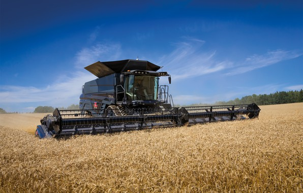 Картинка Поле, Пшеница, 2018, Massey Ferguson, Комбайн, Massey Ferguson Ideal 9T