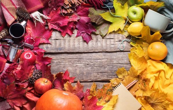 Картинка осень, листья, фон, яблоки, colorful, урожай, клен, wood, background, autumn, leaves, осенние, apples, maple
