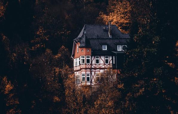 Картинка осень, природа, дом