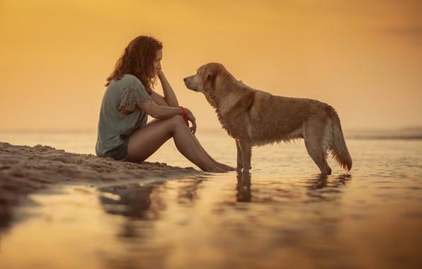Картинка девушка, собака, girl, dog, Alexandre Marques