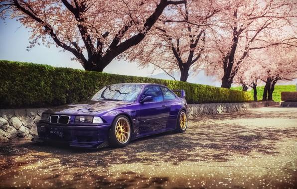 Картинка весна, Япония, сакура, BMW, speedhunters, E36, Rocket Bunny, M3